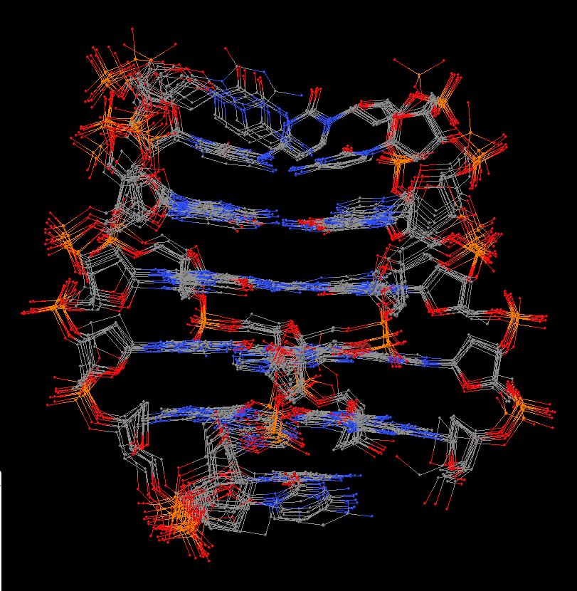 solution structure of a DNA quadruplex (2n2d)