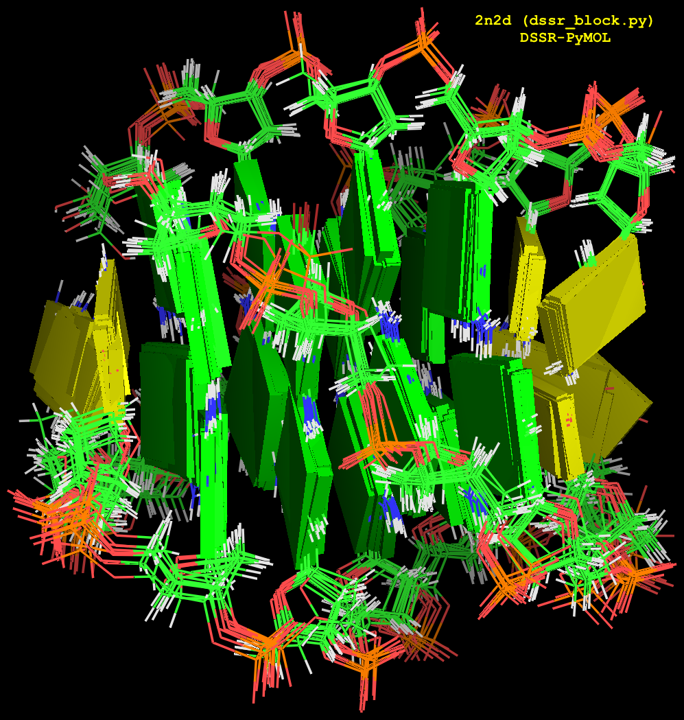 DSSR block image for an NMR ensemble (2n2d)