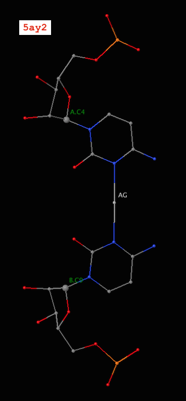 Metallo C-Ag-C base pair (PDB id: 5ay2)