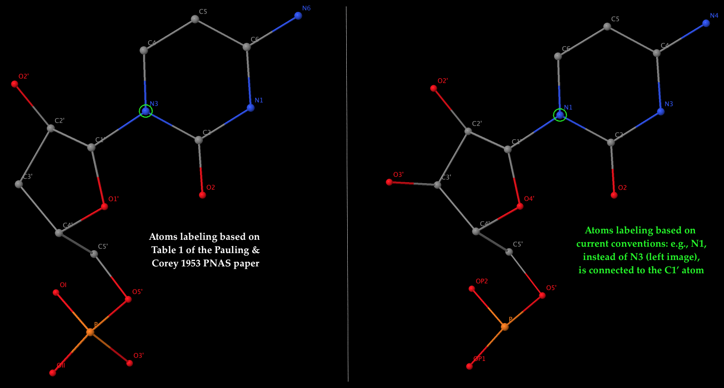 3DNA Homepage -- Nucleic Acid Structures
